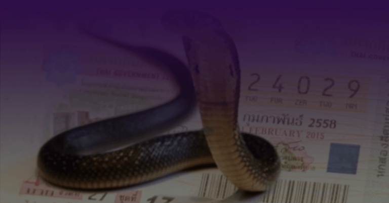 Cover-บทความ-ฝันเห็นงูหลายตัวมีความหมายว่าอย่างไร